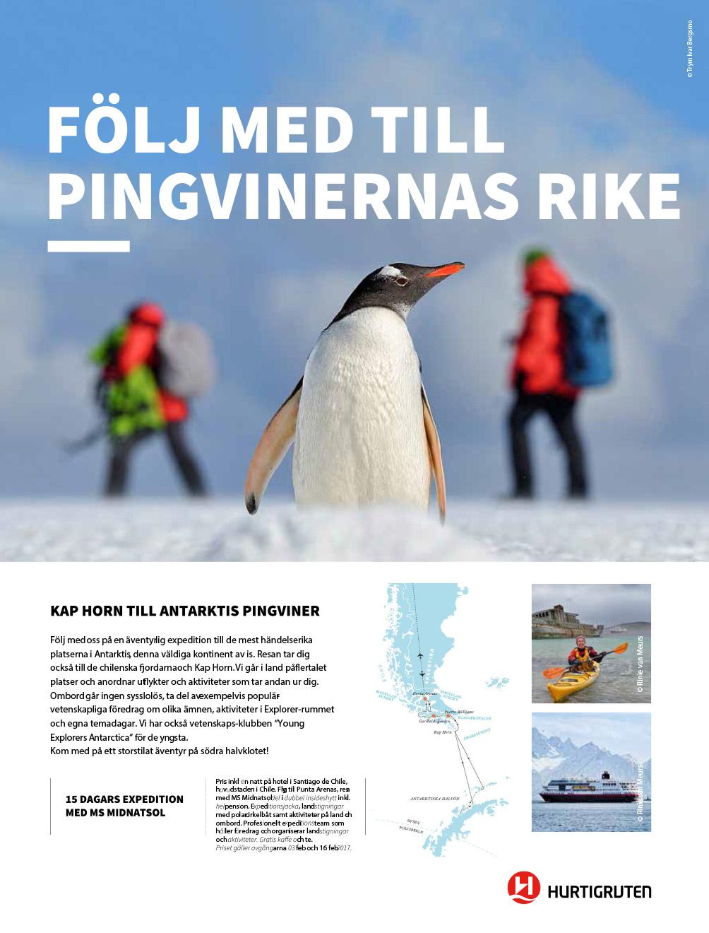 Flyer_KapHorn till pingviner_kampanj