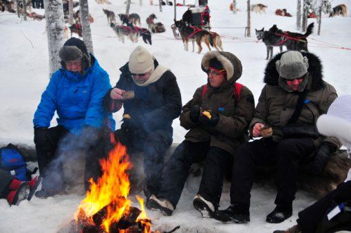 Fyra personer tar kaffepaus vid elden på Jokkmokks marknad. Hundslädar syns i bakgrunden